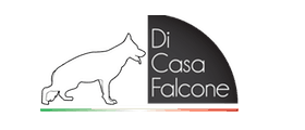 Cuccioli Pastore Tedesco Casa Falcone