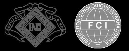 Allevamento Pastore Tedesco riconosciuto ENCI/FCI