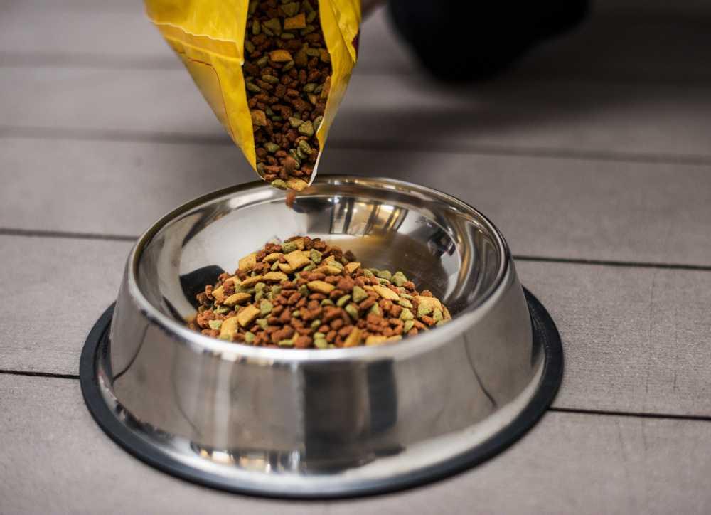Croccantini per cani: le ceneri grezze sono un sinomino di qualità scadente?