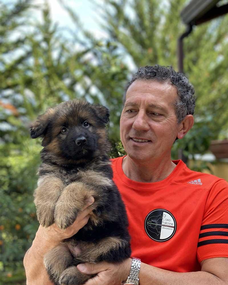 Cuccioli di Pastore Tedesco in vendita