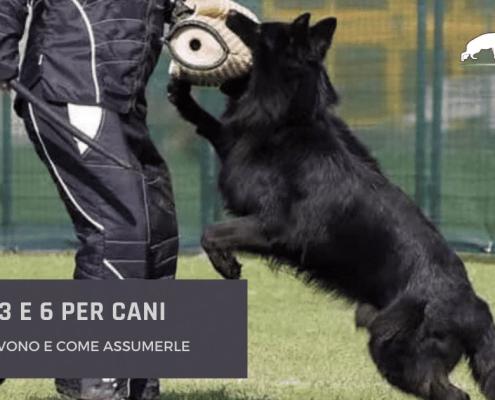 omega 3 E 6 per cani